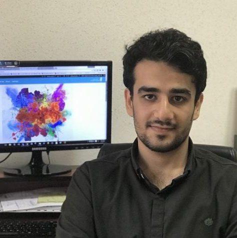 محمدرضا میر